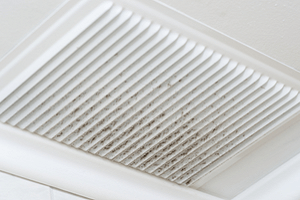 mould remediation air duct cleaning